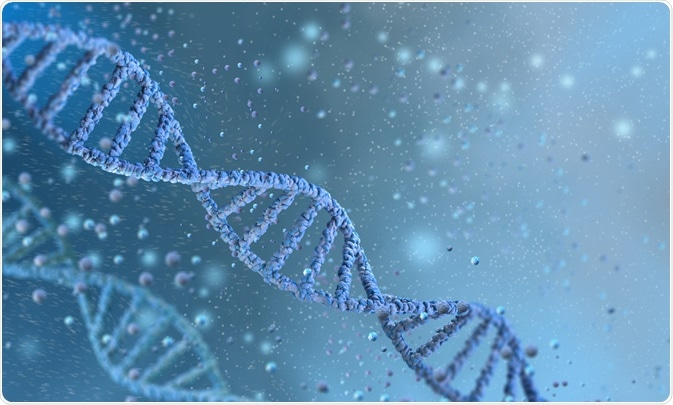 Clinical and Evolutionary Genetics of Pakistani Populations.  ICGEB 10th Anniversary Symposium.